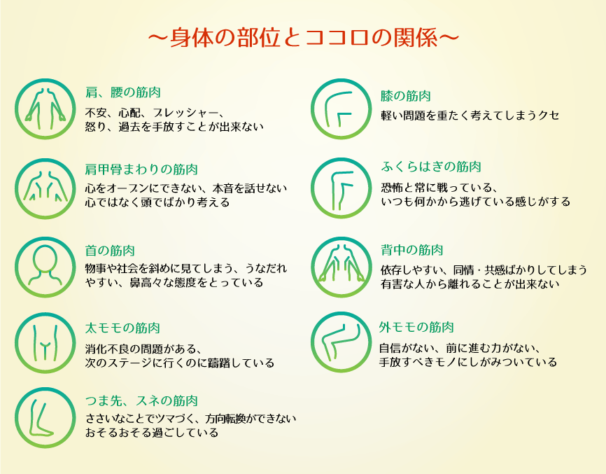 身体の部位とココロの関係に関する解説図